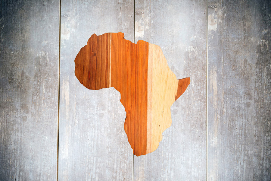Africa Shapes in various woods and sizes
